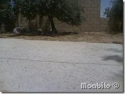 Summer Rain in Smakieh, Karka, Jordan (3)